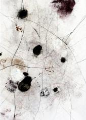©Anne Penman Sweet: Organic Matter II